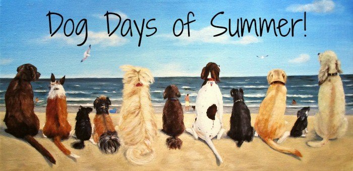 Stay Fit in the Dog Days of Summer